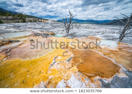 quente · parque · Wyoming · EUA · natureza · amarelo - foto stock © capturelight