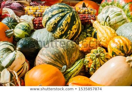 バスケット 外に 自然 生活 秋 収穫 ストックフォト © icemanj