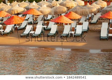 grupy · wakacje · plaży · Hiszpania · znajomych · lata - zdjęcia stock © meinzahn