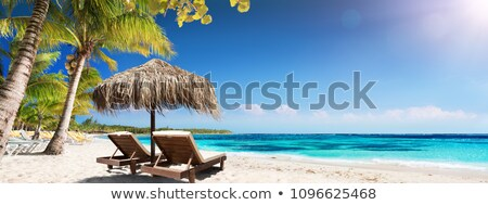 palm tree with straw umbrella on a beautiful beach Stock photo © feedough