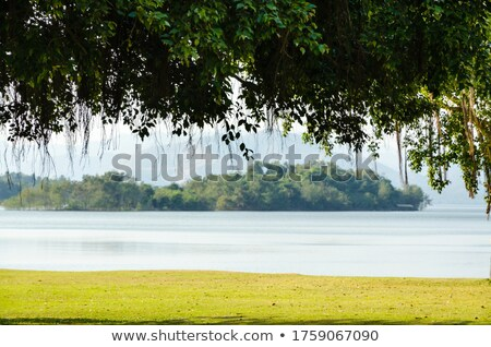 Landscaped lawns for leisure on a Kaeng Kra Chan lake Stock photo © Yongkiet