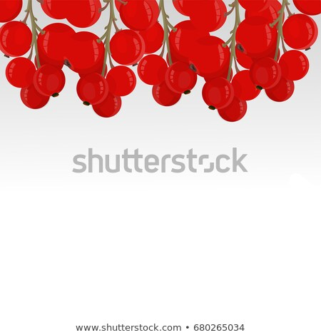 ripe red currants with green leaf isolated on white background stock photo © maxpro