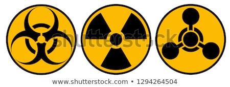 radioatividade · ícone · vetor · longo · sombra · teia - foto stock © smoki