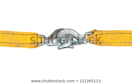 Towing Ropes with Hooks Connected on White Background Stock photo © stevanovicigor
