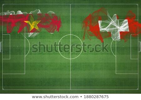 Швейцария Суринам флагами головоломки изолированный белый Сток-фото © Istanbul2009
