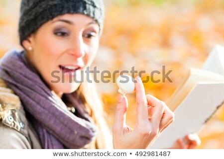 Woman identifying mushrooms with book Stock photo © Kzenon