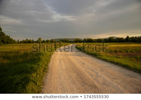 Golden sunset in rural region of Croatia Stock photo © xbrchx
