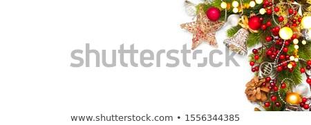 karácsony · díszítések · örökzöld · fenyőfa · ág · közelkép - stock fotó © marylooo