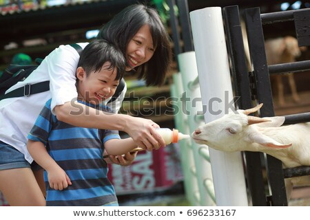 cute little boy with his mom feeding goat in farm stock photo © galitskaya