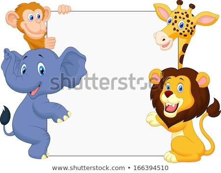 monkey cartoon character animal holding sign stock photo © krisdog