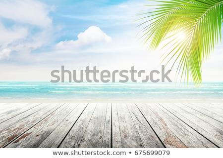 summer background on wood stock photo © mythja