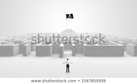 Adam ayakta büyük labirent işadamı labirent Stok fotoğraf © ra2studio