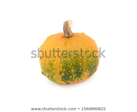 Ornamental gourd ripening from dark green to orange Stock photo © sarahdoow