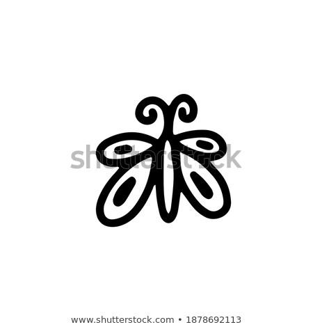 Huit contour papillons nombre réaliste battant Photo stock © blackmoon979