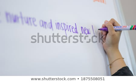 Word Mentoring Handwritten With Blue Marker Stock photo © ivelin