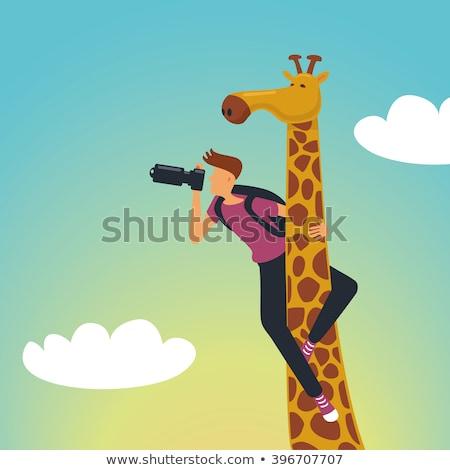 Animais selvagens natureza fotógrafo noite girafa Foto stock © barsrsind