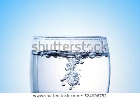 wodorost · pęcherzyki · makro · wiele · mały · niski - zdjęcia stock © morrbyte