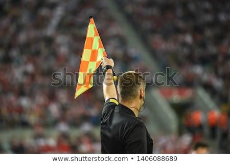 referee Stock photo © vladacanon