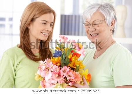 elder flower 30 Stock photo © LianeM