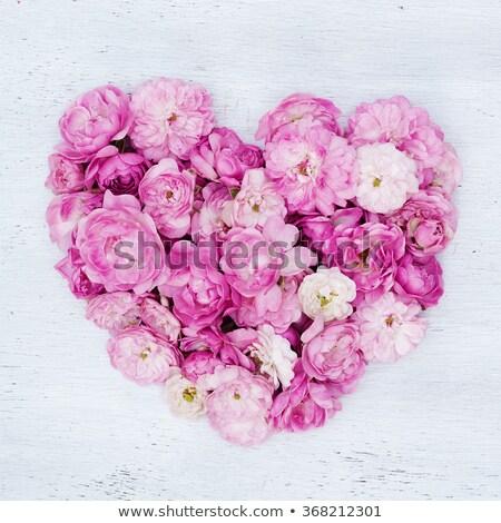 Retro still life - rose and  heart as a gift for birthday Stock photo © gromovataya