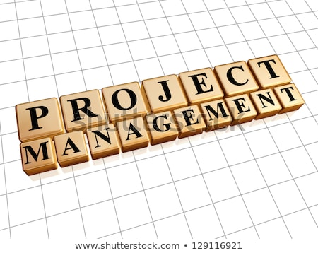 project management in golden cubes Stock photo © marinini