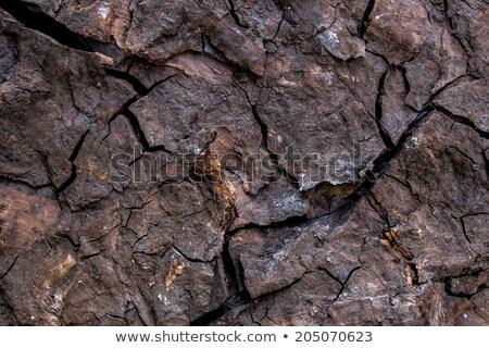 a big lump of coal  Stock photo © antonihalim