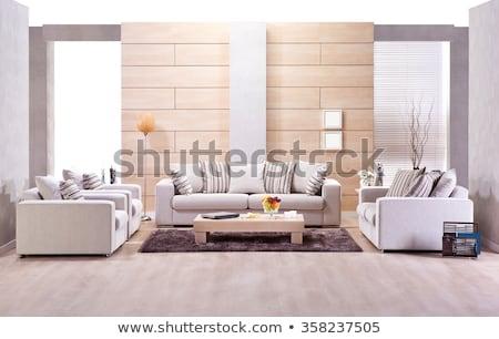 Kanapé szett színes párnák vánkos modern Stock fotó © get4net