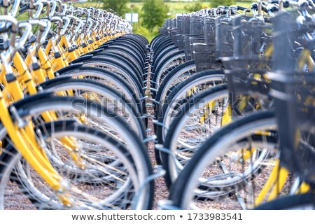 Bicycle Rent Stock photo © cosma