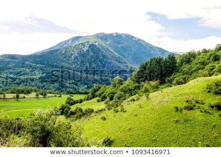 Heuvels valleien groene bergen schoonheid toeristische Stockfoto © marekusz
