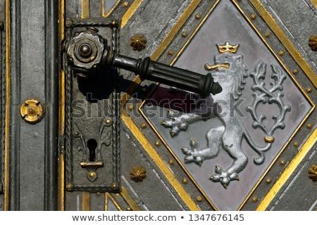 Door-handle decoration detail of old  entrance door in Prague Stock photo © Zhukow