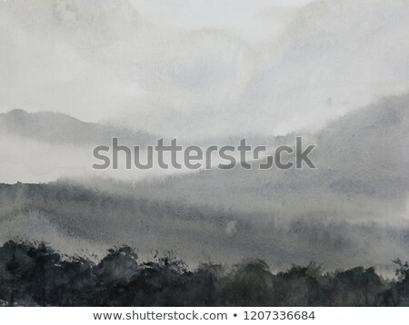 Meadow in a misty morning Stock photo © nature78