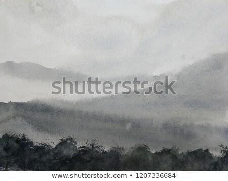 rano · mgły · pola · samochodu · drogowego · tle - zdjęcia stock © nature78