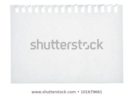 Ballpoint Pen and Blank Note Paper Stock photo © stevanovicigor