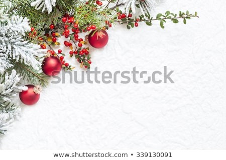 Christmas decoration with rowan on a white background Stock photo © Valeriy