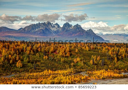 south view mount mckinley range denali national park stock photo © cboswell