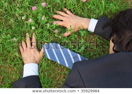businessman lies prone on grass, top view Stock photo © Paha_L