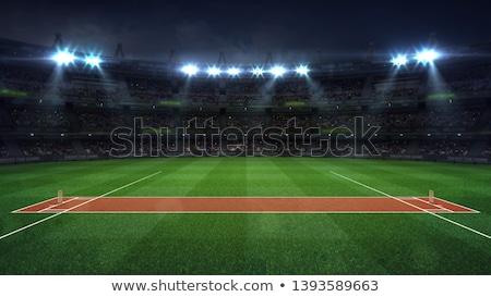 Críquete bola campo homens vencedor boliche Foto stock © rioillustrator