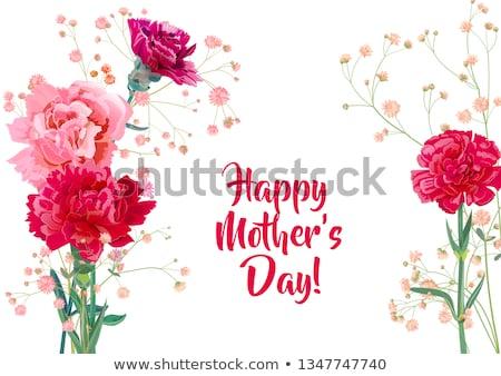 карт шаблон розовый гвоздика цветы иллюстрация Сток-фото © bluering