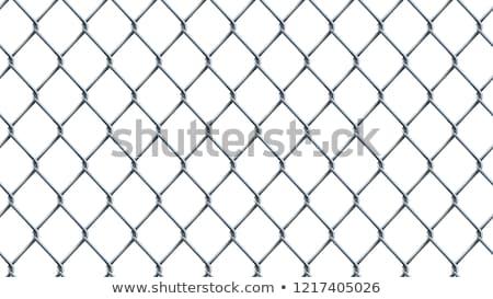 Lánc láncszem kerítés minta valósághű mértani Stock fotó © pakete