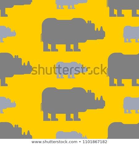 orrszarvú · fehér · orrszarvú · veszélyeztetett · afrikai · portré - stock fotó © maryvalery