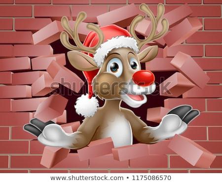 Rendier hoed cartoon muur christmas Stockfoto © Krisdog