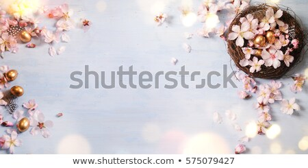 Pink easter eggs on a wooden background with a cherry blossom Stock photo © Zerbor