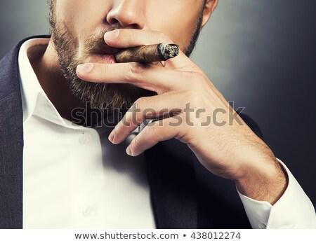 Szakállas férfi dohányzás szivar fotó kalap Stock fotó © sumners