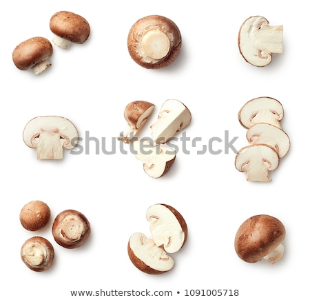 Set of mushrooms isolated on white background. Cut and whole edible wild forest mushrooms. Sketch fo Stock photo © Lady-Luck