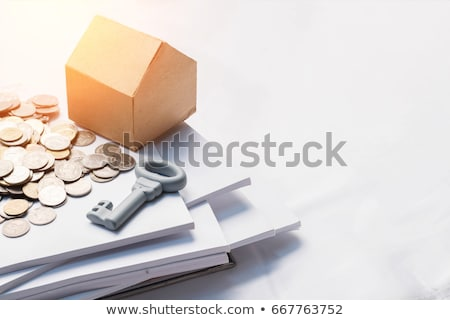 Dollar bills and coins on documents with a calculator Stock photo © Zerbor