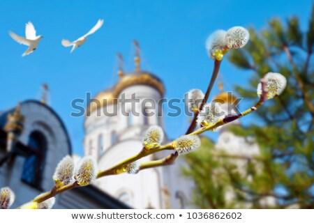 Keresztény ortodox templom terv felirat festmény Stock fotó © FOKA