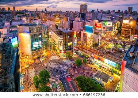 Tokyo cityscape at night, Japan Stock photo © daboost