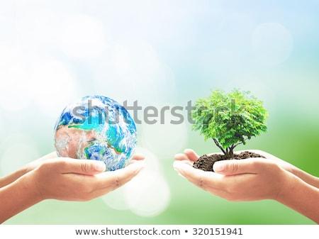 Föld napja kéz illusztráció égbolt földgömb Föld Stock fotó © colematt