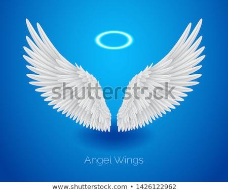 Fehér angyalszárnyak ragyogó valósághű tollak halo Stock fotó © MarySan