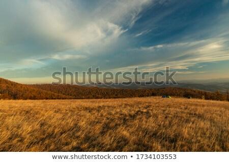 Kirándulás felvidék kettő gyerekek anya hegyek Stock fotó © grafvision